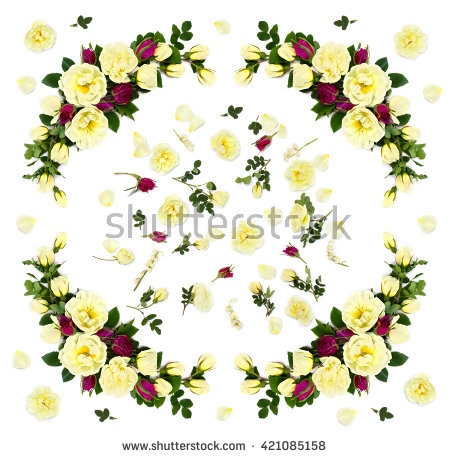 Double Petals Stock Photos, Royalty.