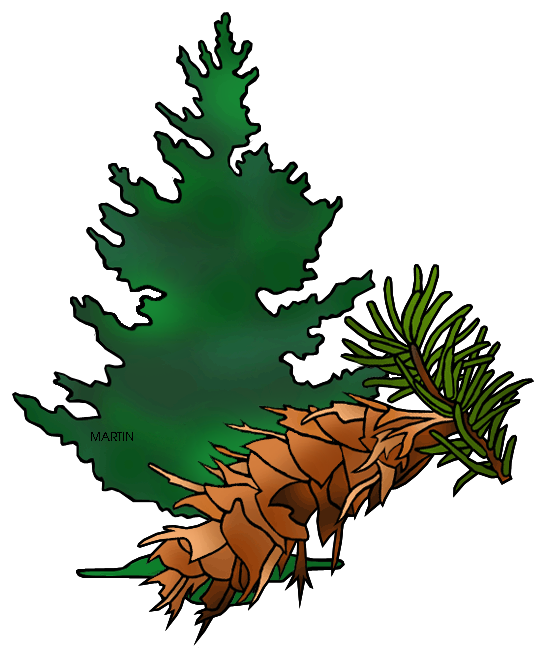 Free United States Clip Art by Phillip Martin, State Tree of.