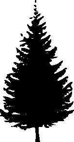 Free Douglas Fir Tree Silhouette, Download Free Clip Art.