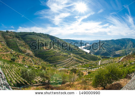 Douro River Stock Photos, Royalty.