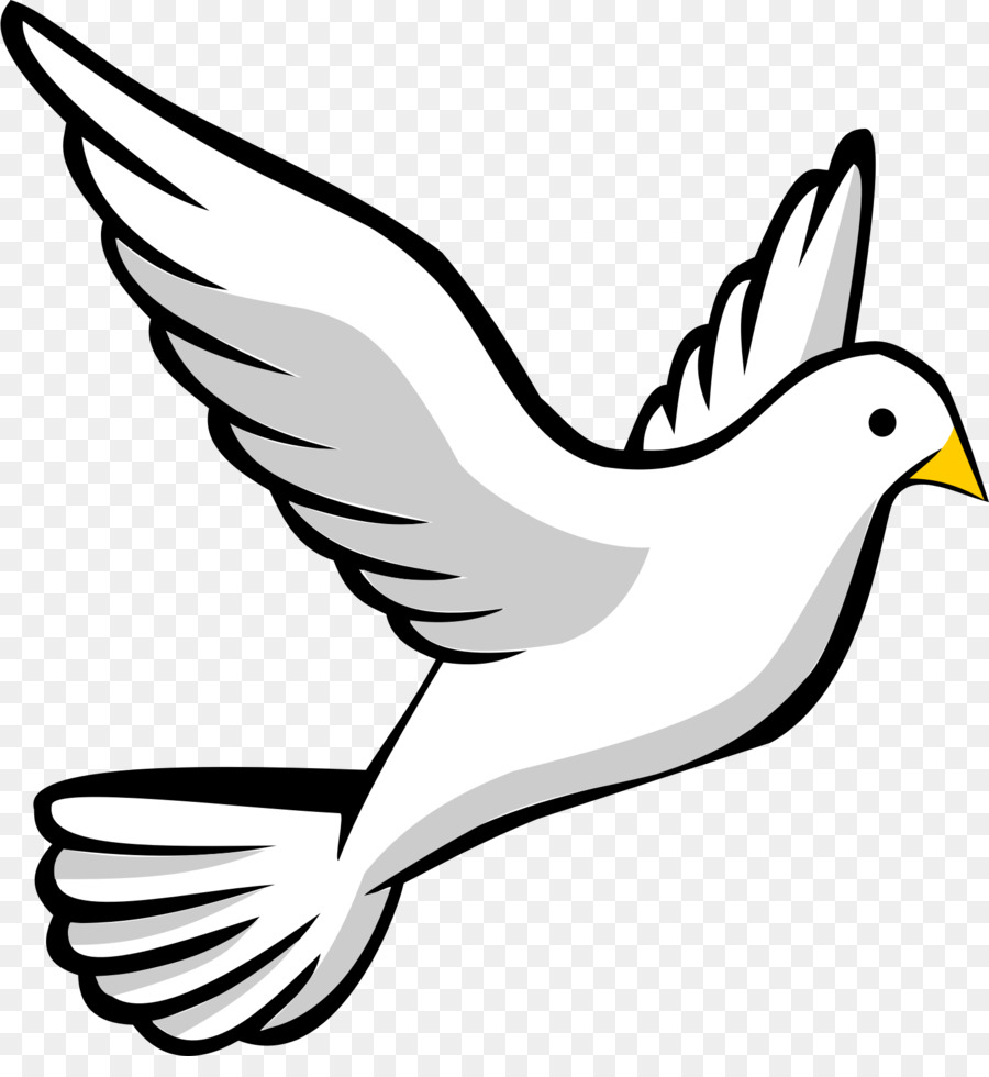 Bird Line Arttransparent png image & clipart free download.