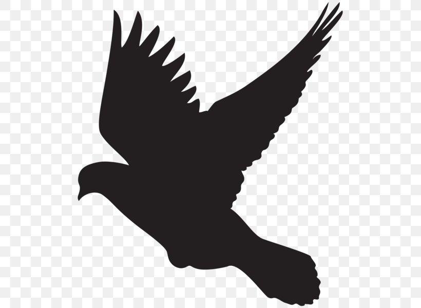 Columbidae Silhouette Dove Clip Art, PNG, 523x600px.