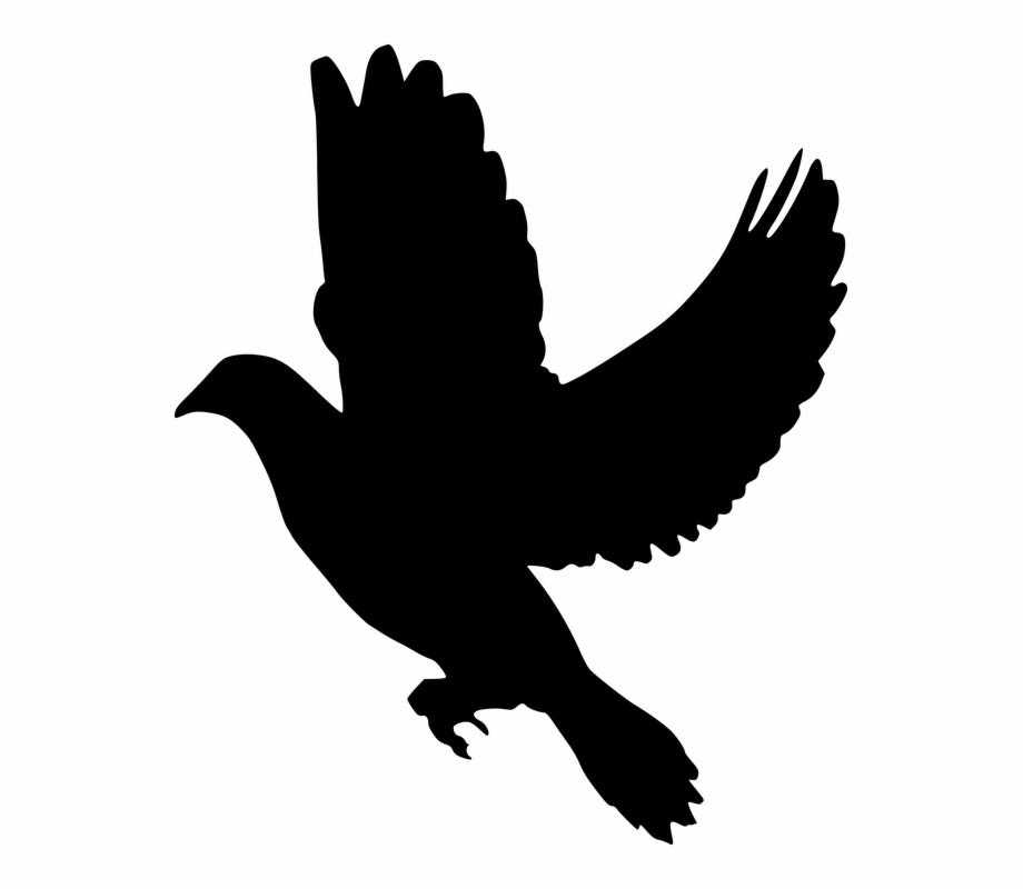 Free Silhouette Doves, Download Free Clip Art, Free Clip Art.