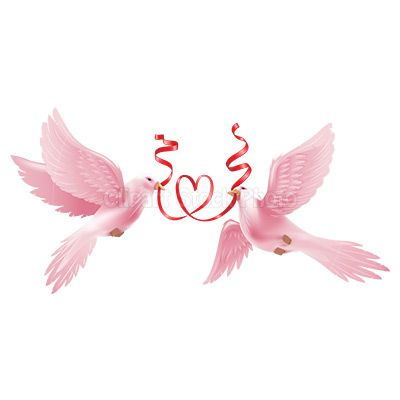 wedding doves.