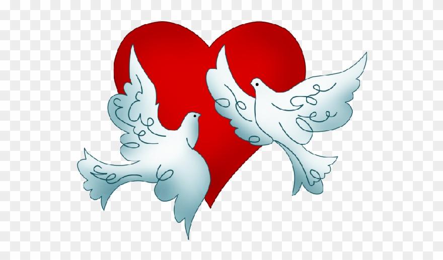 Wedding Dove Clipart 101 Clip Art.