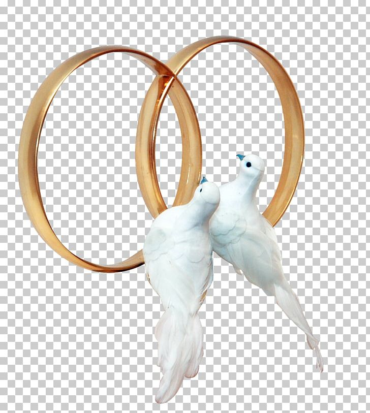 Pigeons And Doves Wedding Ring PNG, Clipart, Body Jewelry, Bride.