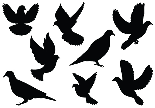 Free Flying Dove Silhouette, Download Free Clip Art, Free.