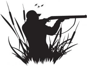 Free Quail Hunting Cliparts, Download Free Clip Art, Free Clip Art.