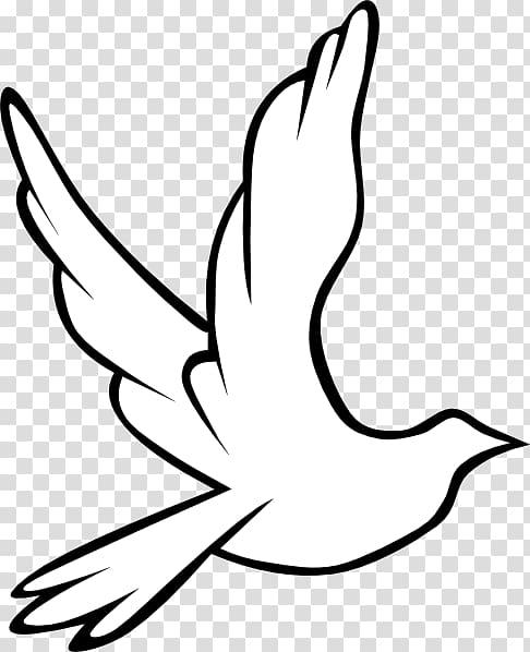 White dove icon, Columbidae Holy Spirit Doves as symbols.