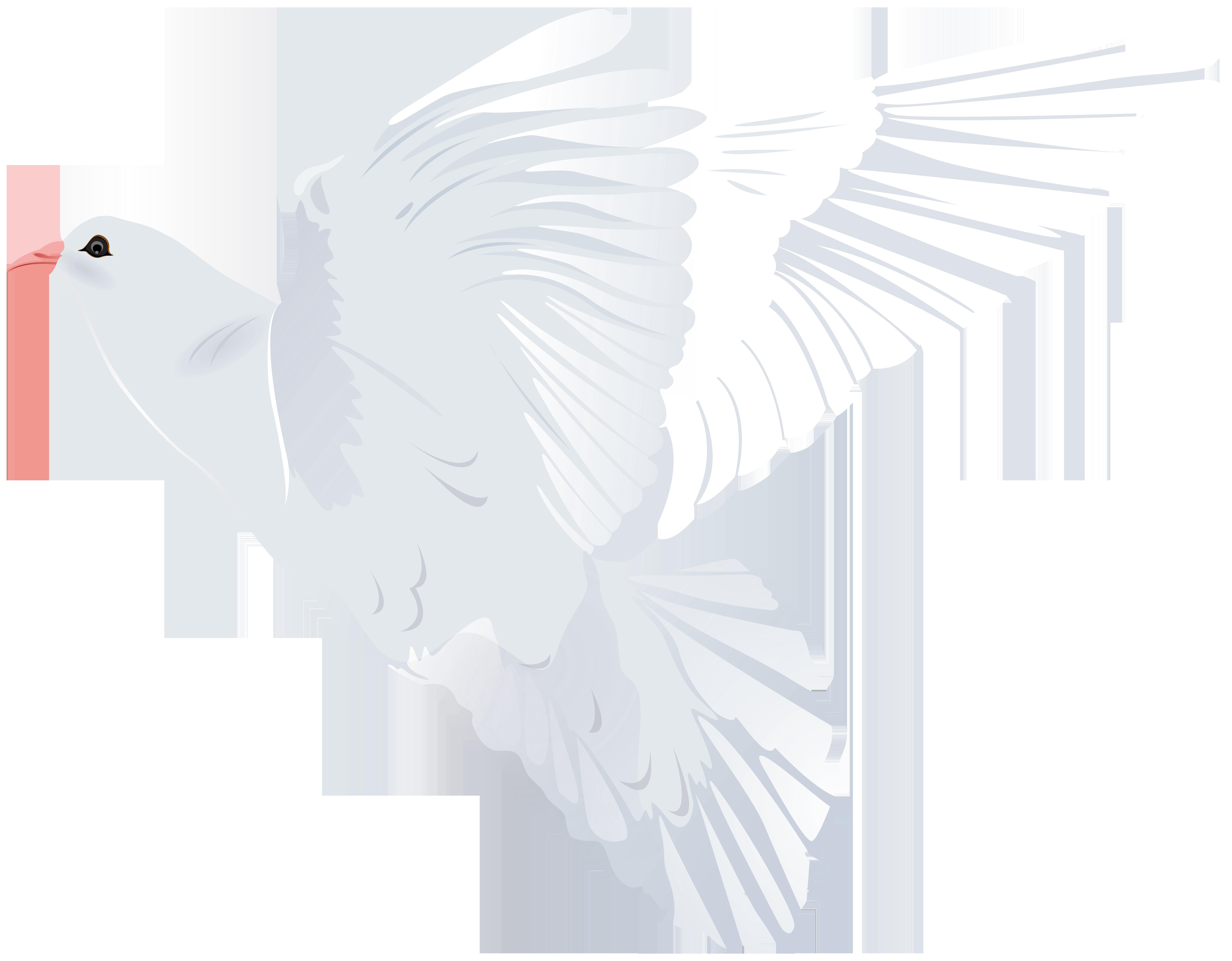 White Dove Transparent PNG Clip Art Image.