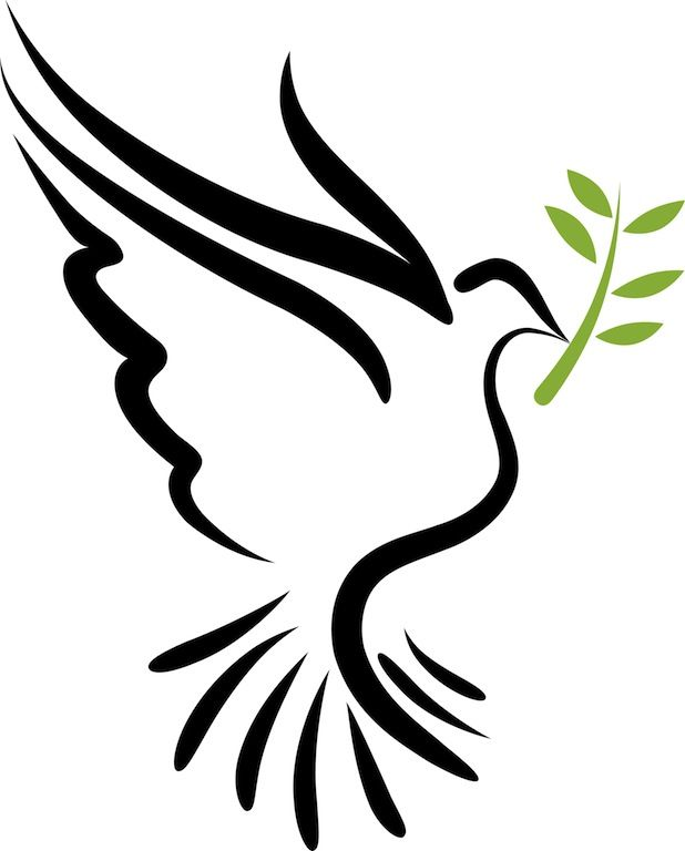 1000+ ideas about Peace Dove on Pinterest.