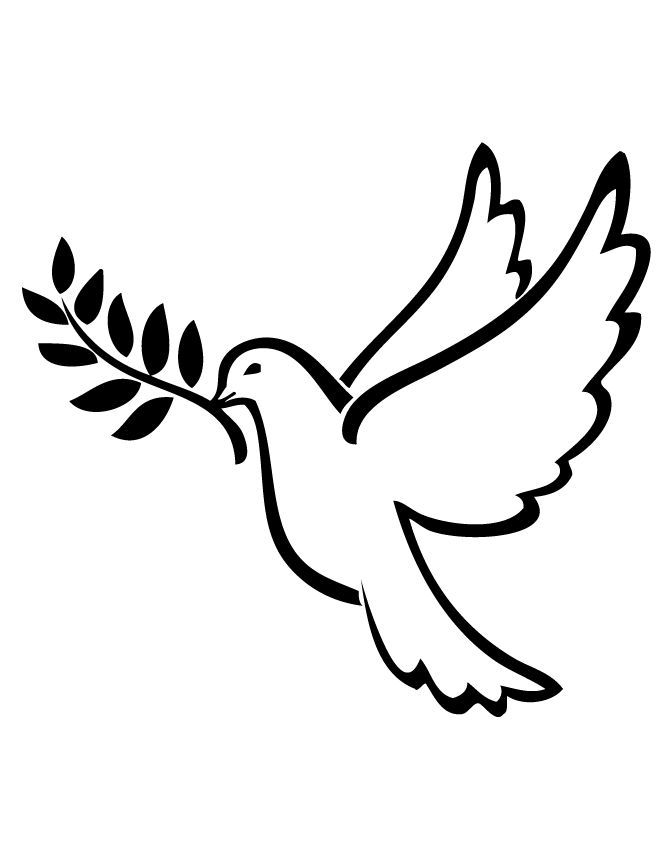 Dove clipart olive branch.