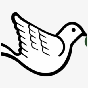 Dove With Olive Branch , Transparent Cartoon, Free Cliparts.