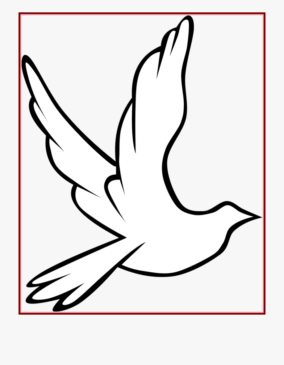 Download Holy Spirit Dove Outline Clipart Pigeons And.