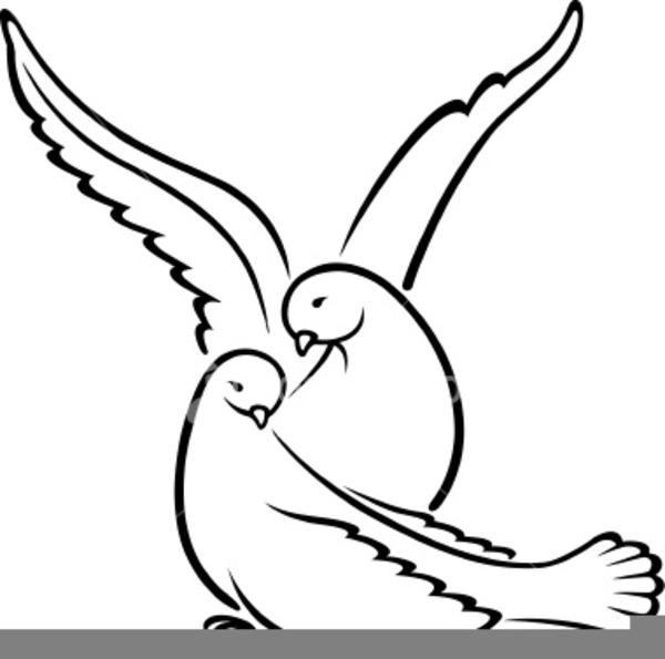 Wedding Dove Clipart.