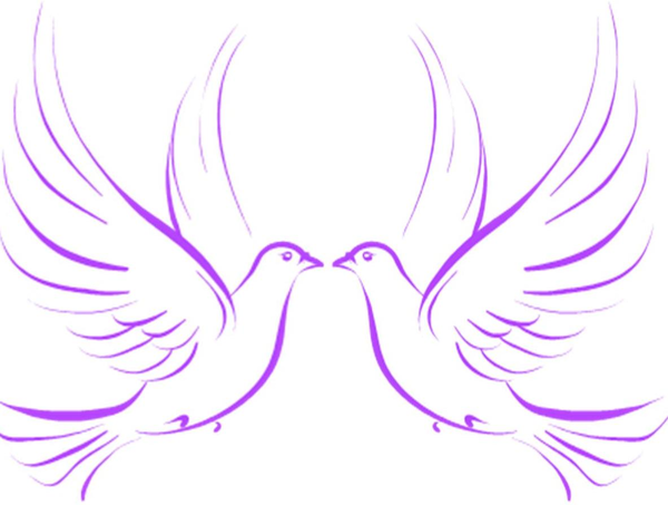Wedding Dove Clipart Png.