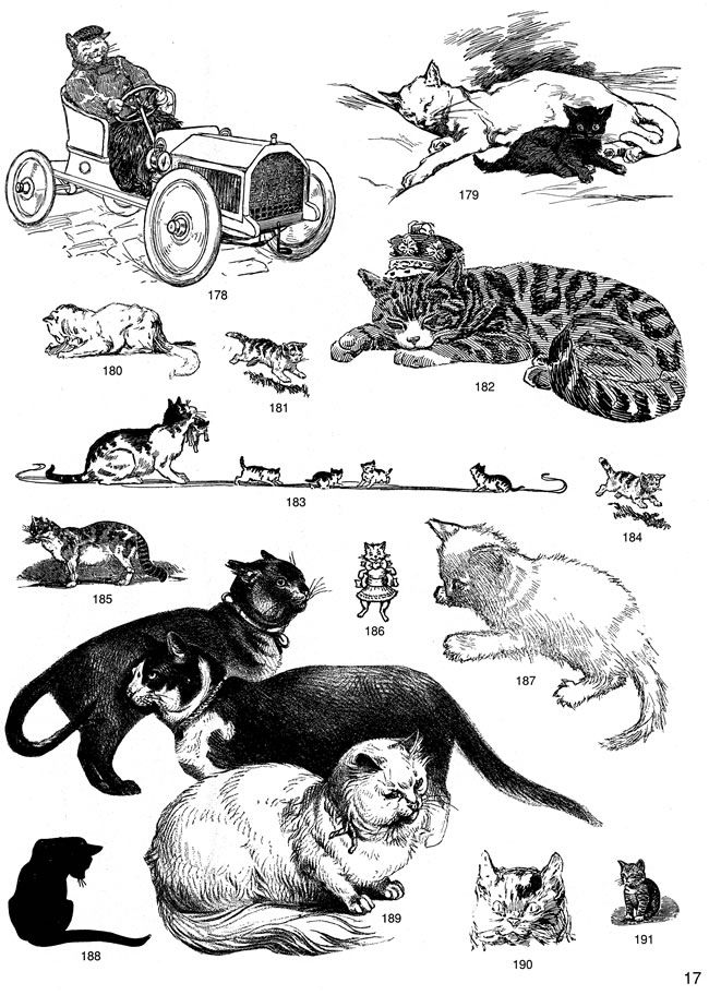 free samples of cat clipart from Dover Publications.