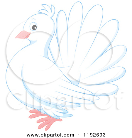 Cartoon of a Cute White Dove or Pigeon.
