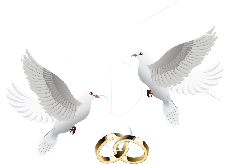 HD Ring Vector Marriage Wedding Download Hd Png Clipart.