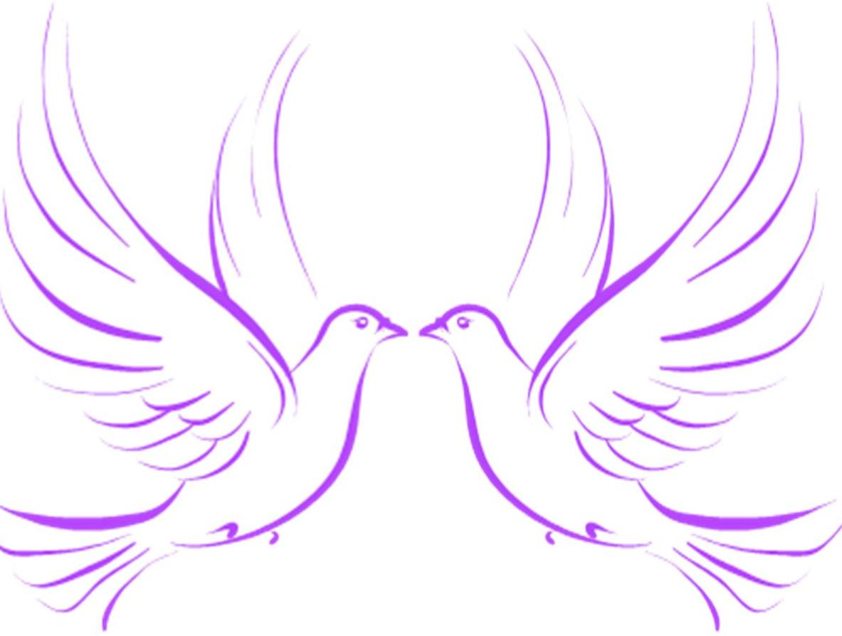 Wedding dove clipart.