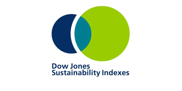 Essity industry leader in Dow Jones Sustainability Index.