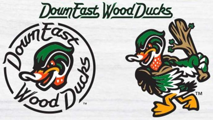 Down East Wood Ducks \'hatch\' new logo this afternoon.