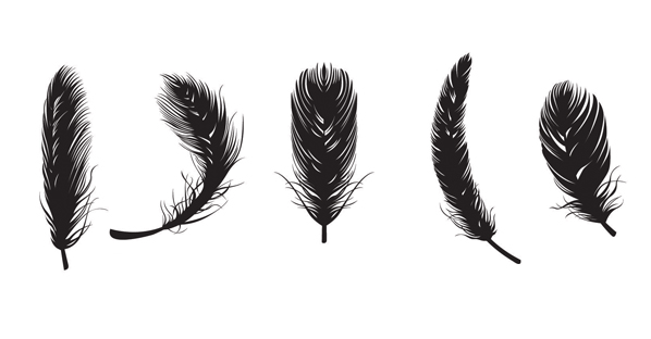 Feather Clip Art to Download.