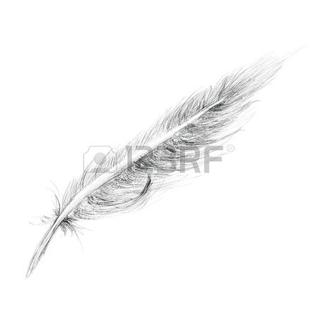 1,114 Down Feathers Stock Illustrations, Cliparts And Royalty Free.