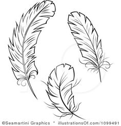 Tribal Feather Clipart.