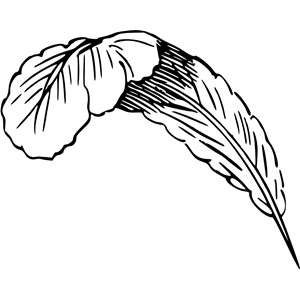 Feather clipart, cliparts of Feather free download (wmf, eps, emf.