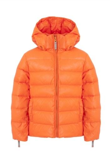 Jackets and Coats.