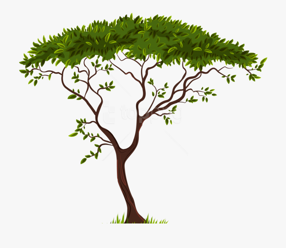 Free Png Download Exotic Tree Clipart Png Photo Png.
