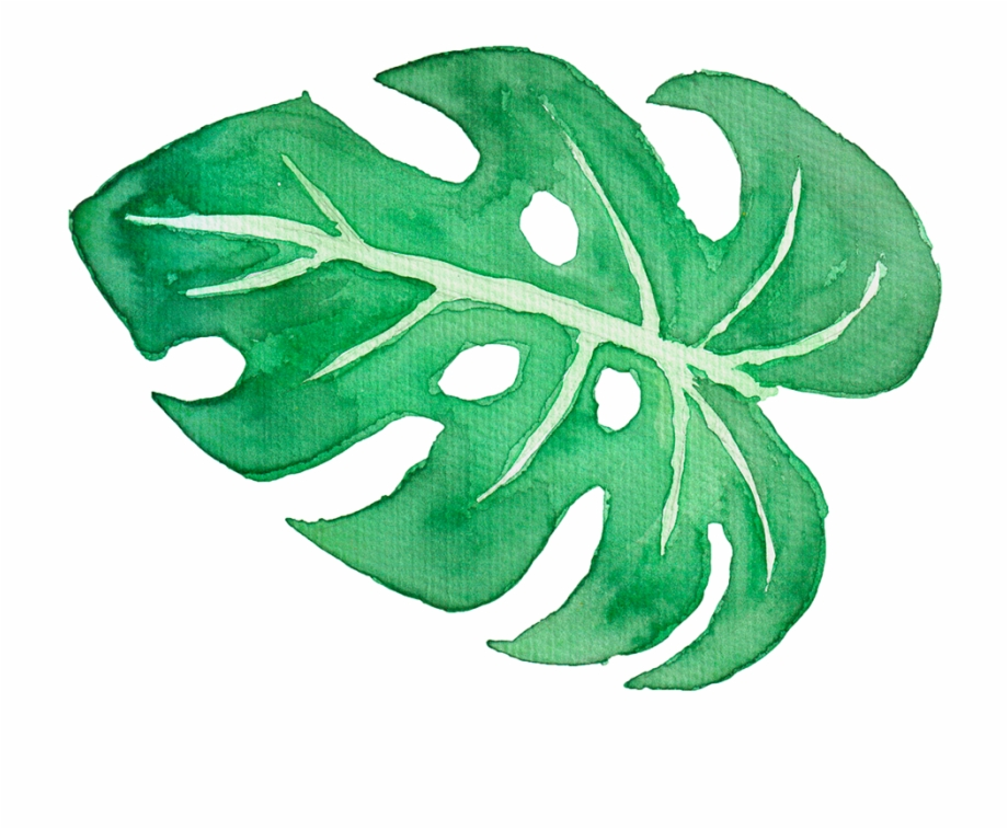 Tropical Leaves Watercolour Clipart.