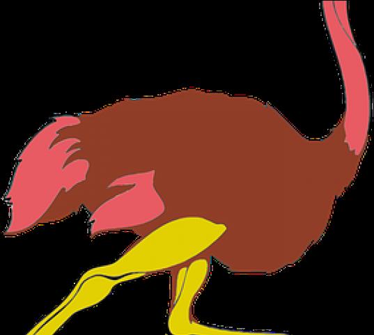 Ostrich Clipart Gambar.