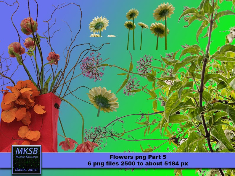 flowers png, Overlays, Photoshop, Digital Downloads, Instant Download, png,  png files, downloads, images, photography, flower, nature.