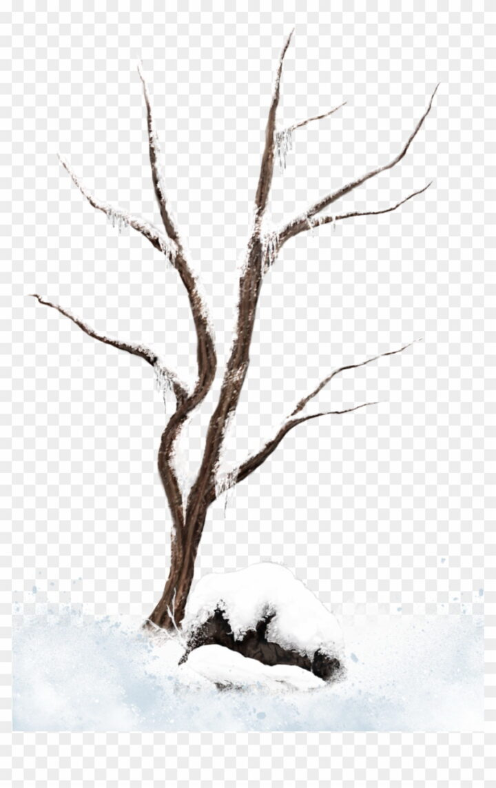 Winter Tree Branches Clip Art Clipart Free Download Snow.