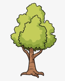Tree Png Image Free Download, Free Download, Picture.
