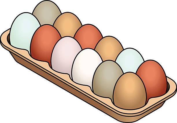 Best Dozen Eggs Illustrations, Royalty.