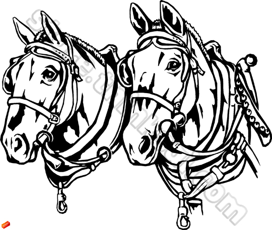 royalty free draft horse clipart