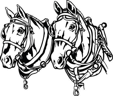 296 Draft Horse Stock Vector Illustration And Royalty Free Draft.
