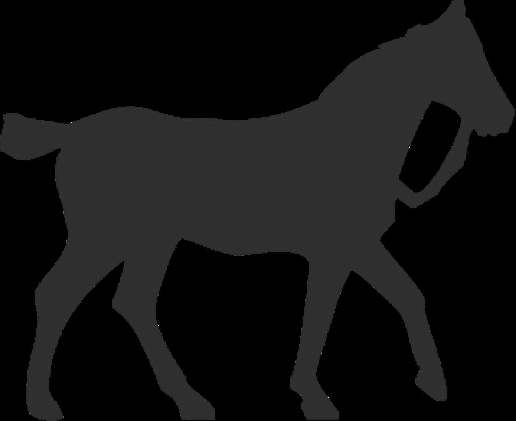 Horse Silhouette Equestrian Pet.