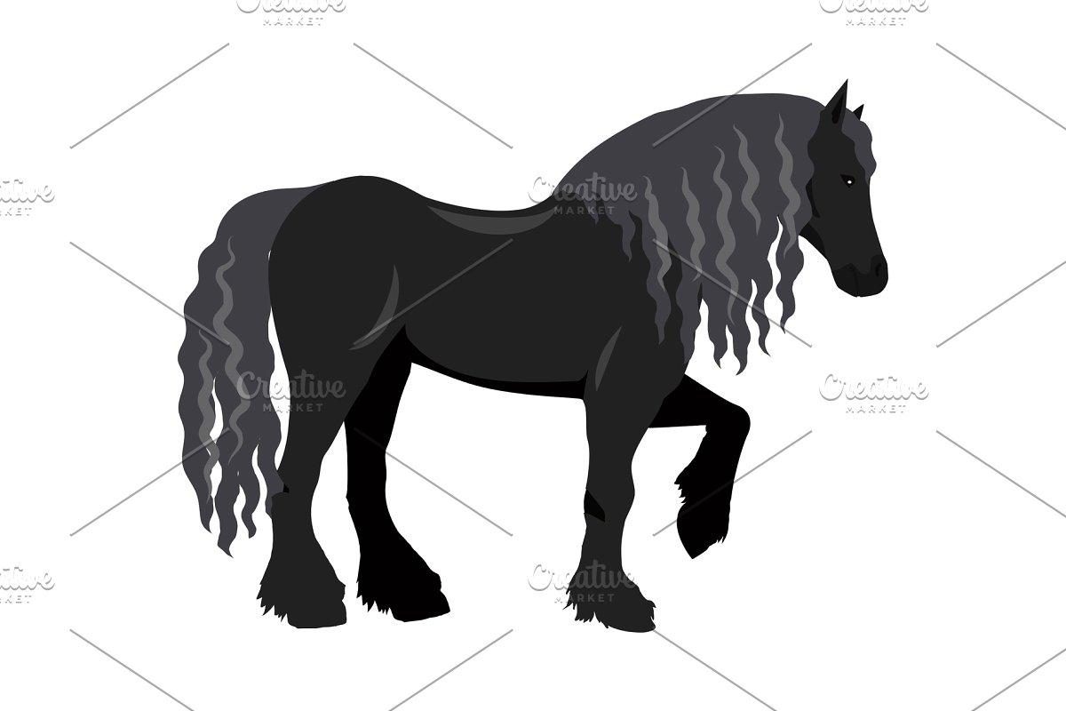 Draft Horse Vector Illustration in.
