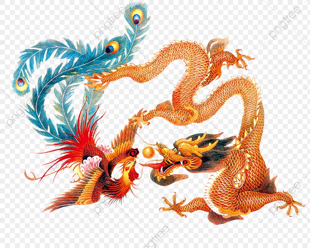 Dragon And Phoenix Playing With A Pearl To Pull Material Free.