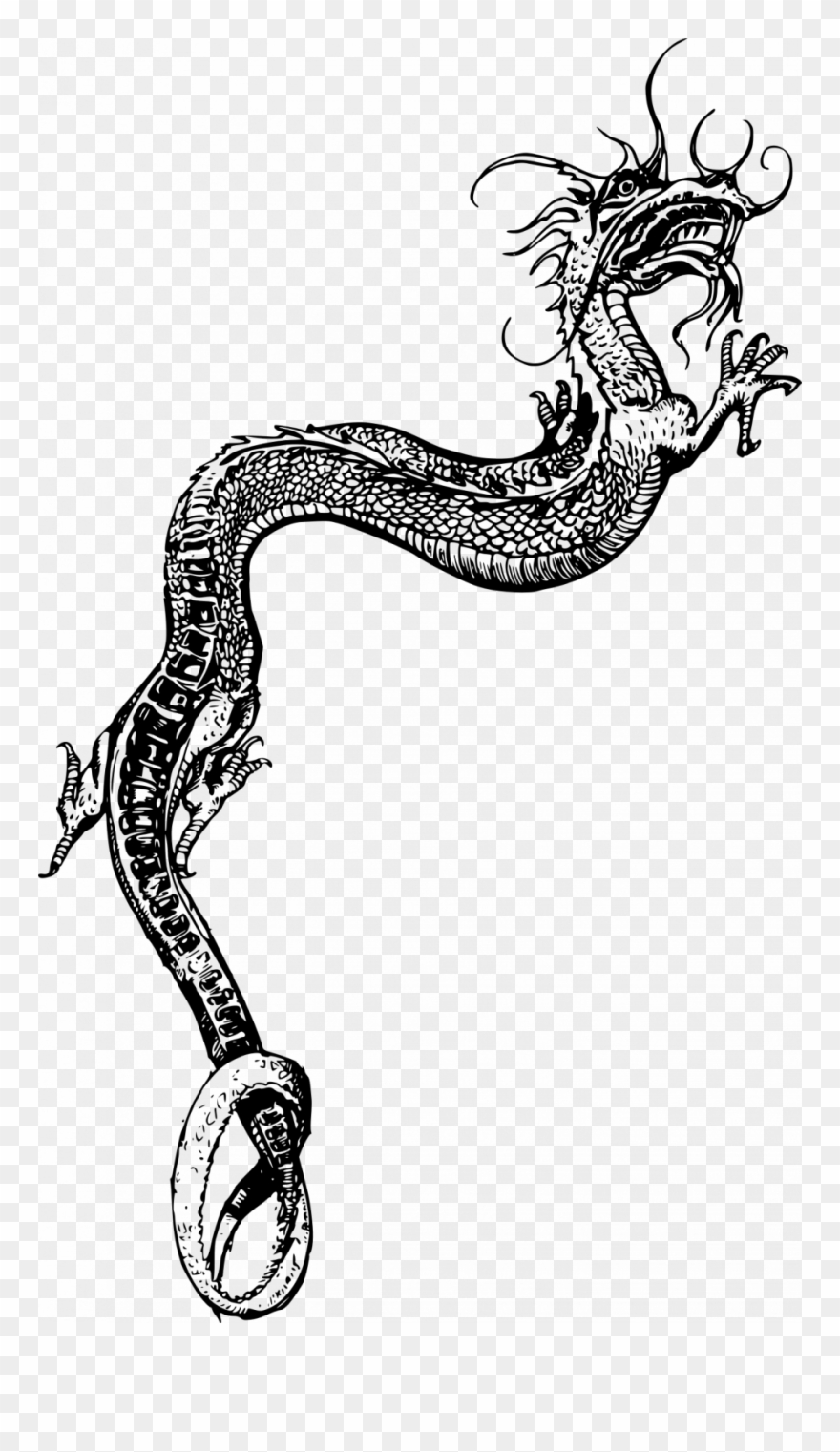 Chinese Dragon Outline Free Download Best Chinese Dragon.