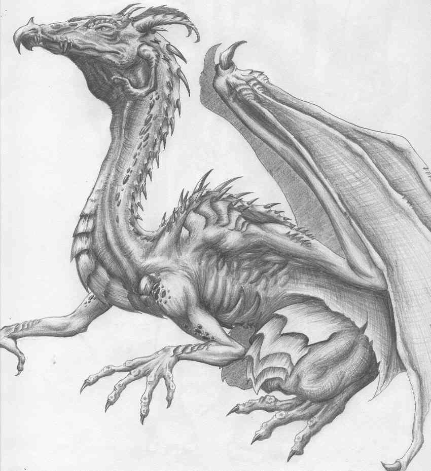 dragon clipart pencil 20 free Cliparts | Download images ...