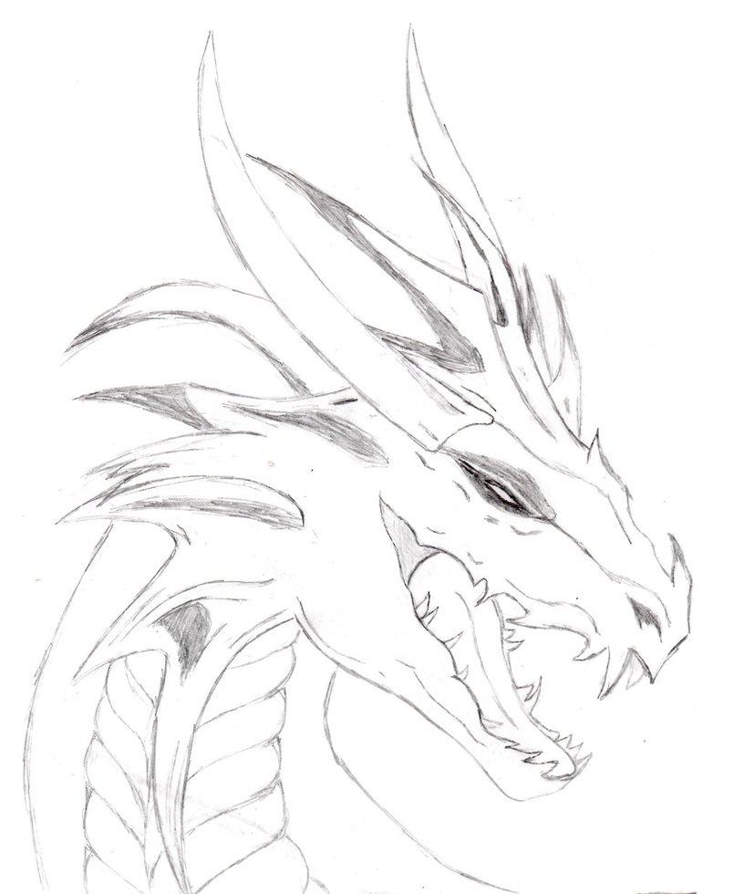 Free Dragons Drawings, Download Free Clip Art, Free Clip Art.