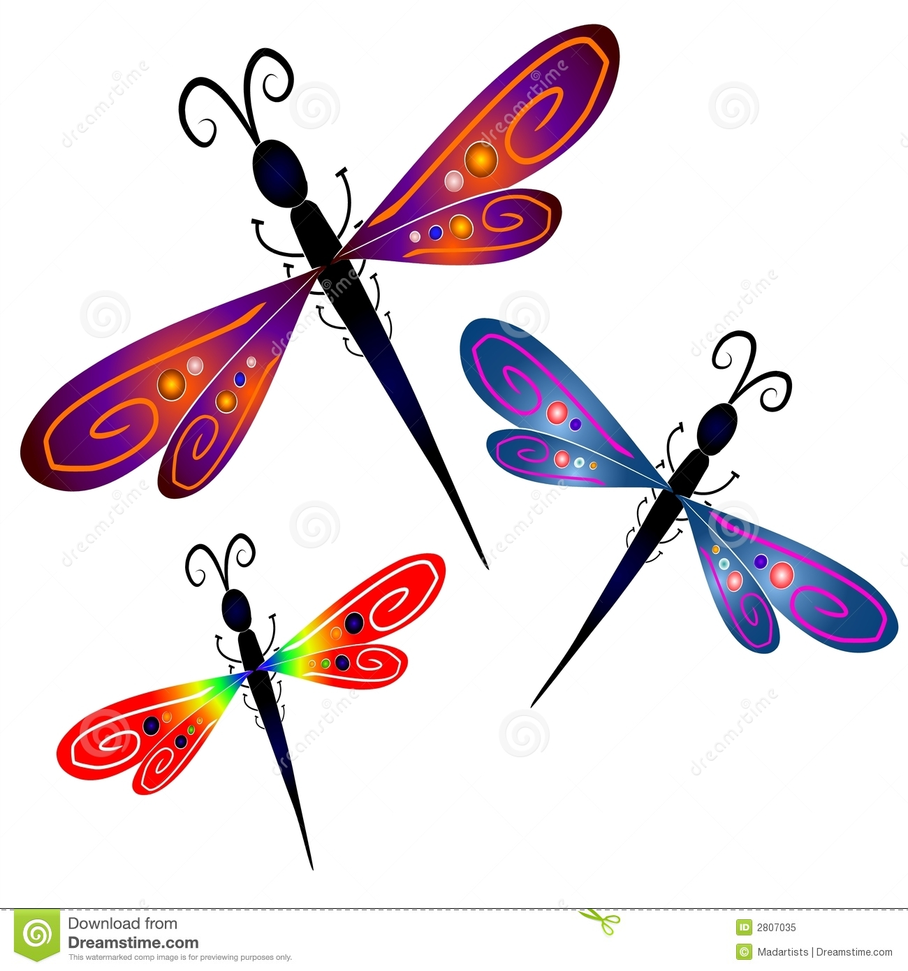 Dragonfly Stock Illustrations.