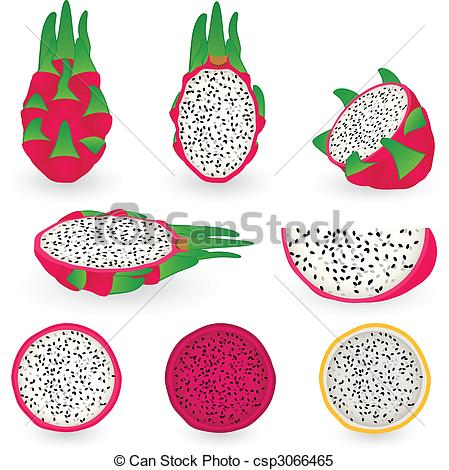 Dragon fruit Stock Illustrations. 641 Dragon fruit clip art images.
