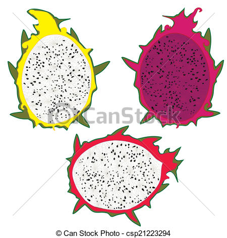 Dragon fruit Vector Clip Art EPS Images. 458 Dragon fruit clipart.