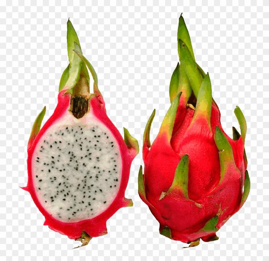 Pitaya Fruit Images Dragon Fruit Pictures Clip Art.
